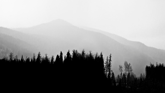 Estes Park Silhouette, Arapaho National Forest, Colorado, black and white, photography, photograph, photographer