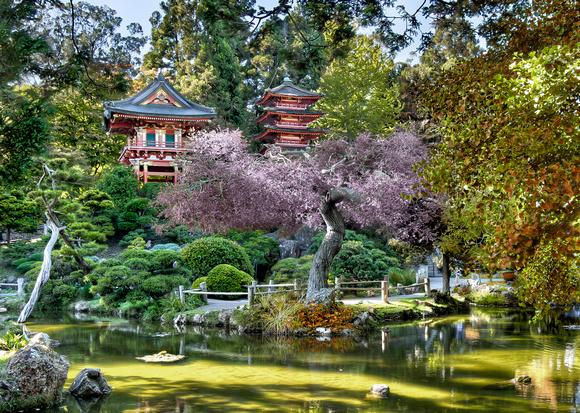 Snethkamp Photoart Hdr Japanese Gardens Golden Gate Park San Francisco